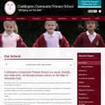 Cuddington Community Primary School Inside Page by Greenhouse School Websites