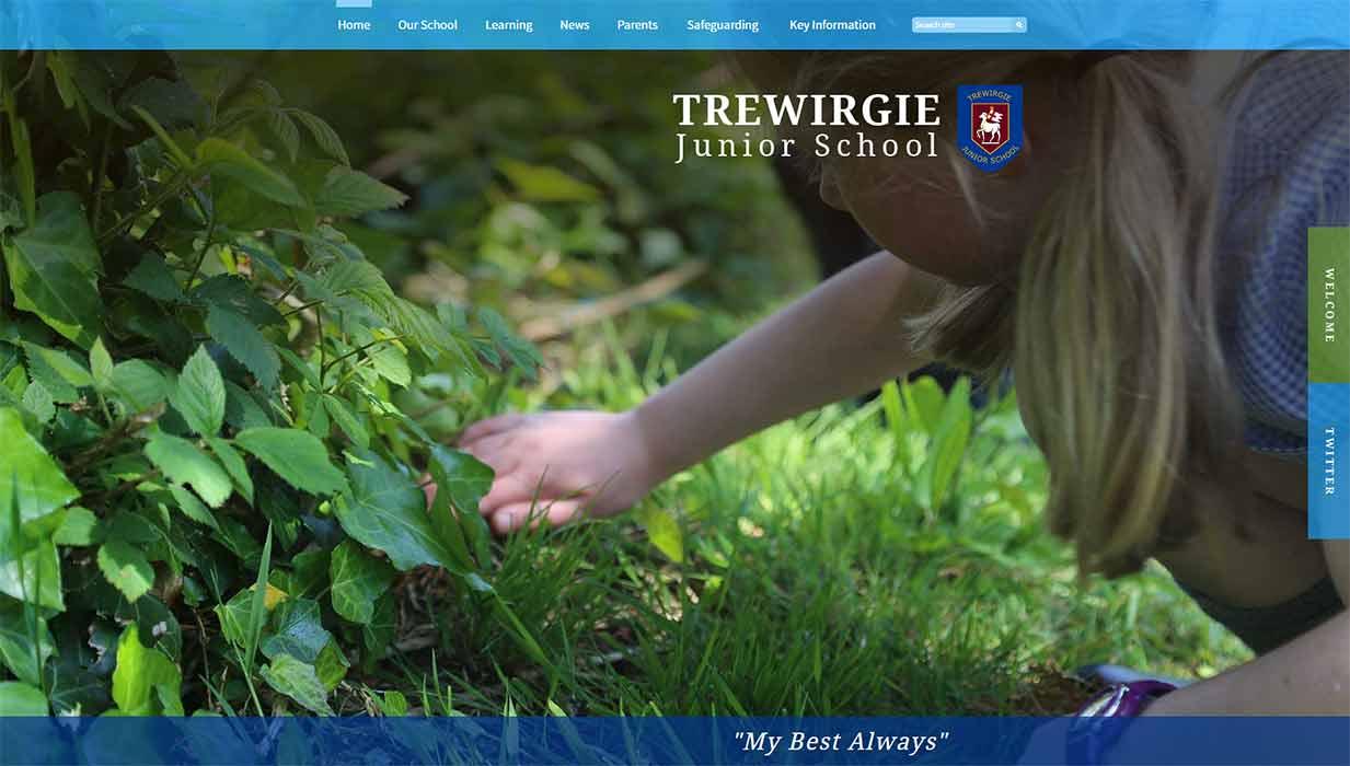 Trewirgie school website design