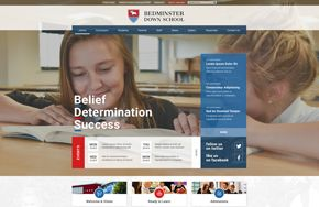 Screenshot of the Bedminster Down School website