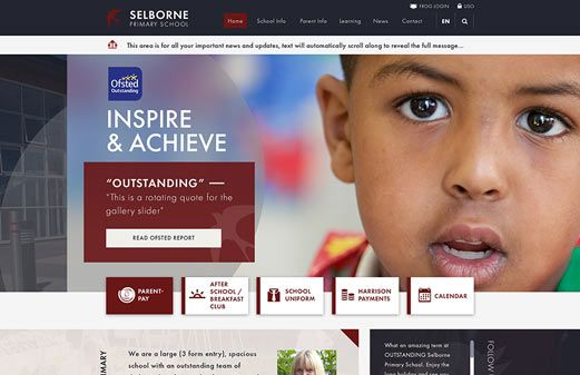 Screenshot of the Selborne Primary School website